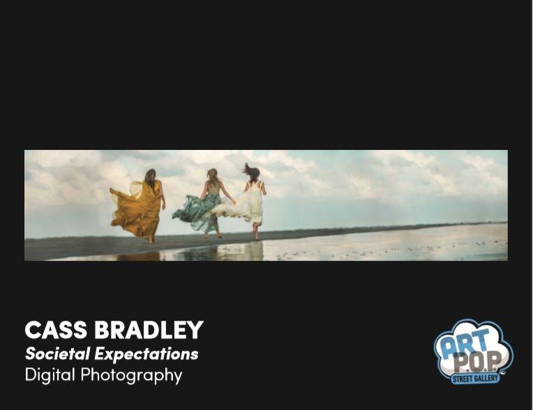 ArtPop_Bradley