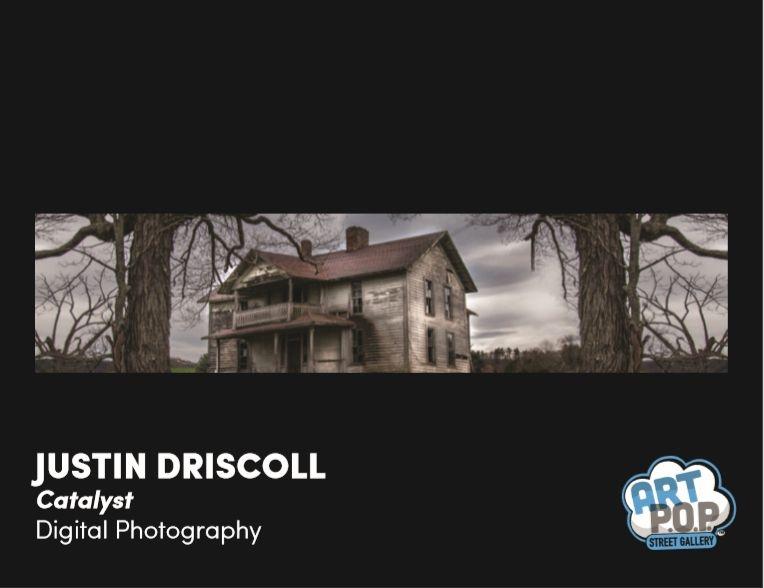 ArtPop_Driscoll
