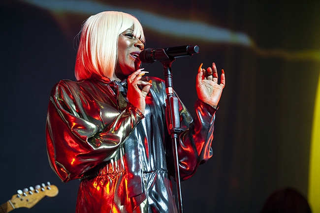 Nile Rodgers (5)