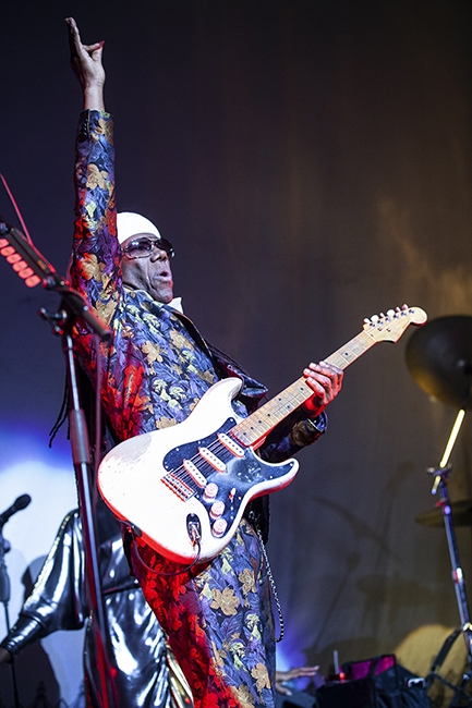 Nile Rodgers (8)